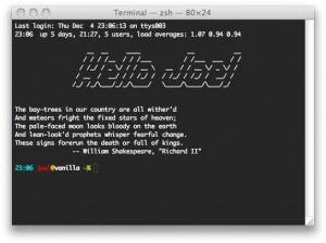 The Terminal application on Mac OS X
